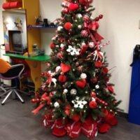 Kerstbomen etaleur kapsalon