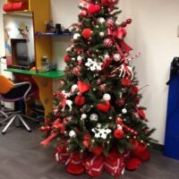 Kerstbomen Kinder kapsalon