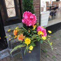 Bloemen en planten verhuur